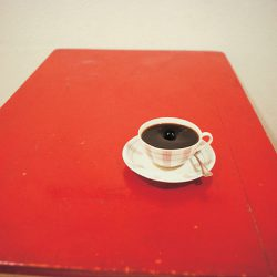 Object, 1981